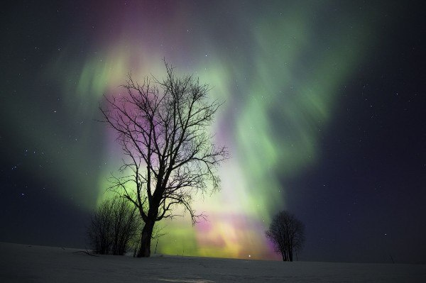 Стало известно, когда смотреть «северное сияние» над Москвой