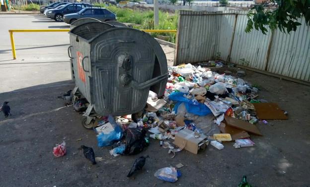 Ответственность за содержание контейнерных площадок по сбору мусора возложат на муниципалитеты