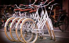 На Московской могут появиться велодорожки